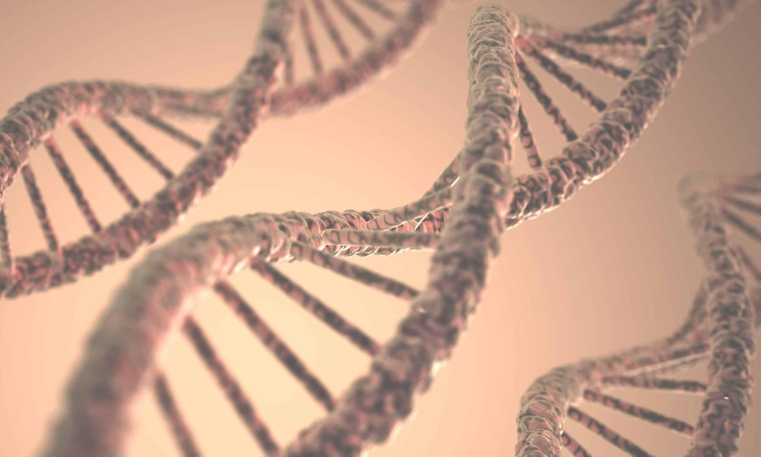dna structure PTFLK73 1